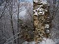 Руїни замку в м. Хуст (ракурс 15).JPG