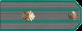 Саветнік мытнай службы III рангу.png
