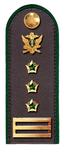 Советник ГГС РФ 1 класса ФССП.png