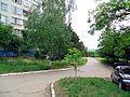 Солнечный - panoramio (14).jpg