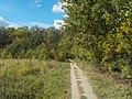 Широколиственный лес Подольского лесничества 01.jpg