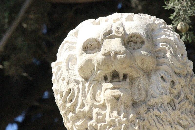 פרט של אריות