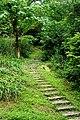姜子寮山步道 Mt Jiangzi-lao Trail - panoramio.jpg