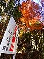 寂光院 (愛知県犬山市継鹿尾杉ノ段) - panoramio (23).jpg