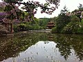 富樂堂 - panoramio (7).jpg