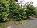 平等院 - panoramio (3).jpg