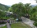 花蓮縣瑞穗鄉 瑞穗牧場 Ruisui Ranch(Ruisui,Hualien) - panoramio (2).jpg
