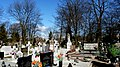 - Cmentarz Nowofarny - panoramio (31).jpg