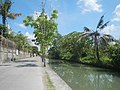 0032Views of Agnaya irrigation canals 09.jpg