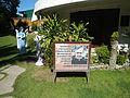 01298jfWelcome Roads Center Extension Hospital Talavera Ecijafvf 26.JPG