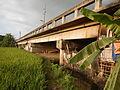 03910jfPaddy fields village Baliuag Bulacan Candaba Pampanga Bridge Roadfvf 09.JPG
