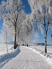 04.1 Sauerland im Winter 12-2010.jpg