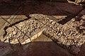 08.07 總統訪視「基隆市和平島考古遺址現場」 (50198434926).jpg