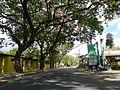 09418jfBinalonan San Manuel Pangasinan Barangays Roads Landmarksfvf 13.JPG