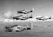 116th Fighter Squadron - P-51 Mustangs