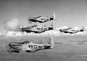 60th Fighter Wing - 116th Fighter Squadron F-51 Mustangs, 1948