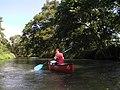 2007-08-13 Yorozui-River Canoe touring 万水川カヌーツーリング(カヤック壇上晴一)P8138742.jpg