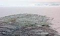 2007 Snow-Hill-Island Luyten-De-Hauwere-Sea-Ice-29.jpg