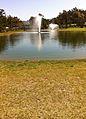 2011-02-23-Golf-Soleil-16.JPG