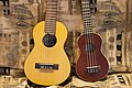 2012-366-202 Happy Strings (7625300636).jpg
