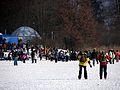 2012 'Seegfrörni' - Pfäffikersee - Irgenhausen 2012-02-12 14-19-05 (SX230).JPG