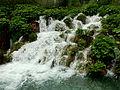 20130608 Plitvice Lakes National Park 141.jpg