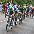 2014 Tour de France - Stage 2 (14594428364).jpg