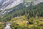 2018-08-13-Rifugio Val di Fumo-0397.jpg