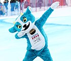 2020-01-10 Women's Super G (2020 Winter Youth Olympics) by Sandro Halank–797.jpg