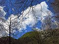 230 La muntanya de Sant Antoni des del camí de Salelles (Camprodon).JPG