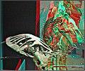 3D IMG 1184+ (11626402276).jpg