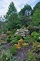 46-101-5012 Lviv Botanical Garden F RB 18.jpg