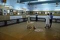 56th Dum Dum Salon - Kolkata 2013-10-19 3641.JPG