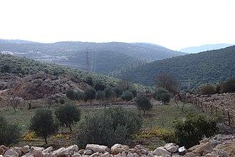Ajloun - Countryside of Ajlon