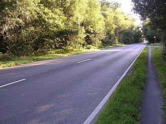 A35 road - The A35 in the New Forest