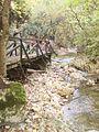 A Dera patak szurdokvölgye Pilisszentkereszt mellett.JPG