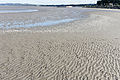 A Visit To Sandymount Strand (6051260082).jpg