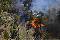A burning section of forest land can be seen during the Black Forest Fire near Colorado Springs, Colo., June 12, 2013 130612-Z-UA373-189.jpg