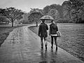 A walk in the rain.jpg