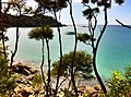 Abel Tasman trail, National Park, South Island, New Zealand - panoramio (11).jpg