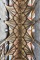 Abtei Seckau Basilika Gewölbe 01.jpg