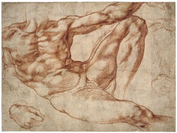 Adam study - Michelangelo