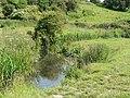 Afon Col-Huw, Llantwit Major - geograph.org.uk - 846886.jpg