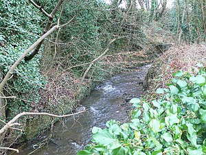 River Gwenfro - The Gwenfro, near Tanyfron.