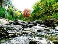 Agua del arroyo.jpg