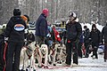 Air Force officer trains for Iditarod 150309-F-YW474-044.jpg