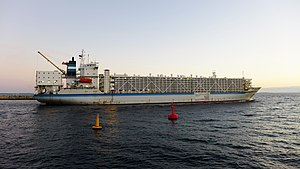 Livestock carrier - Open livestock carrier Al Shuwaikh (25,088 DWT) departing from Fremantle in September 2014