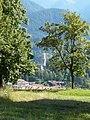 Al di la degli alberi - panoramio.jpg