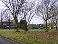 Alder Coppice December View - geograph.org.uk - 1603177.jpg