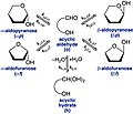 Aldose anomerization.jpg